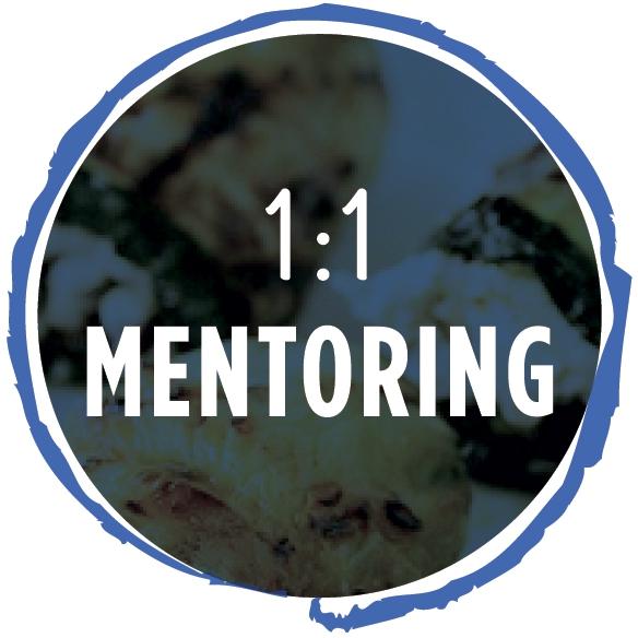 mentoring_icon