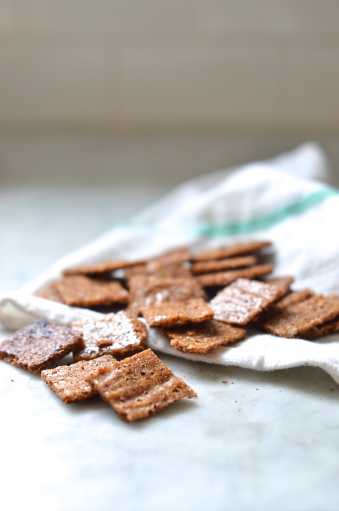 Gluten free graham crackers with just 4 easy ingredients! OMG I can't stop making these!