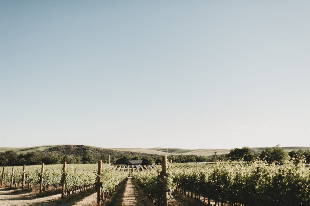 The Simply Real Health Walla Walla Travel Guide: the best wineries, restaurants + pitstops via @simplyrealhealth